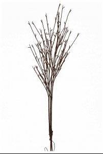"""50"""" WILLOW BRANCH WITH 120 WARM WHITE LEDS  [184138]"""