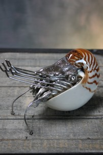 Pewter Chambered Nautilus with Shell [374309]