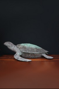 Resin Turtle with Removable Shell [376013]