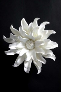 "12""D WHITE WALL BLOOM [FF2294]"