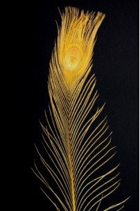 Gold Peacock Eye Tail Feather [FTRPCKGLD]