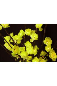 Green Plum Flower 60 Light 40 Inch, Battery Operated [GRFL6040-B]