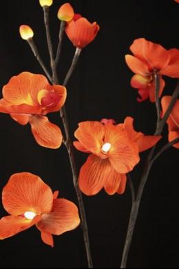 Sunset Orchid 16 Light [SNORQ16]