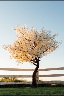 2120 LIGHT 9' WHITE LEAF TREE,  BLACK TRUNK, WARM WHITE LEDS  [391211]