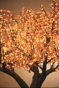 880 LIGHT 7' RED LEAF MAPLE TREE, WARM WHITE LEDS [TREMAP880]