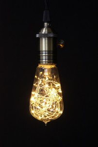 "1W, 30 LED STRING LIGHT BULB, 5""Hx2.25""W [451252]"