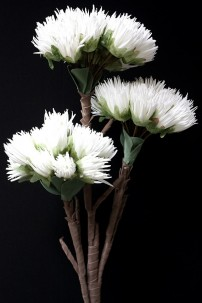 "36""H x 8""D  3 STEM WHITE FOAM FLOWER [FF2365]"