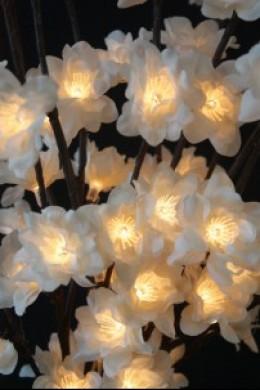 60 Light White Plum Nouveau [184110]  PRE-ORDER END OF FEBRUARY