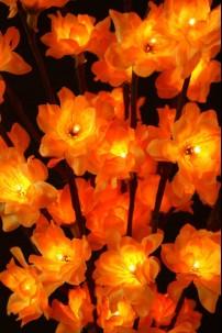 """Amber Plum Nouveau 96 Light LED 40"""" [184149]"""