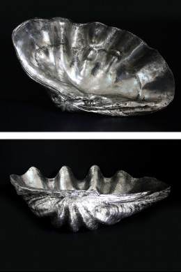 """Giant Clam Shell 31""""W, 9""""H [201279]"""