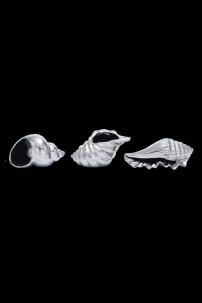 "Ceramic Shell, Set of 3, 7""W, 4"" [201305]"