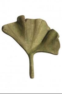 Ginko Leaf 11 W WHM [367202]