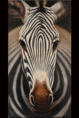 Zebra Wall Art [901270]