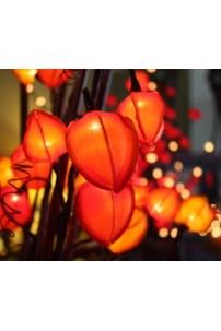 Chinese Lantern Red 30 Light [CHLTRD30]