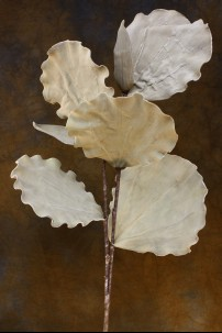 Taupe Ginkgo Leaves 38 Inch [FF2045]