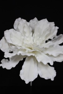 "White Foam Flower 27"" [FF2252]"