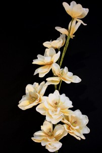 "55""H x 6""D SM BLOOM, 9""D LRG BLOOM, BEIGE & WHITE BLOOMS [FF2266]"