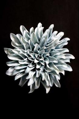 Blue Wall Flower [FF2298]