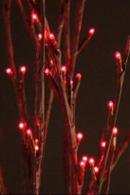 Red Willow Branch 60 Light 40 Inch - Battery Operated [RDWL6040-B]